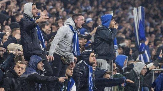 Vielen Schalke 04-Fans passt das Aus von Domenico Tedesco gar nicht.