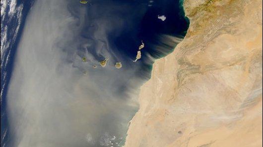 Sahara-Staub hat sich aus Afrika nach Deutschland auf den Weg gemacht und sorgt für einen trüben Himmel.
