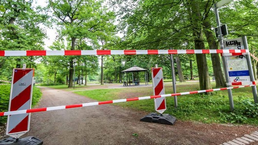 Der Eichenprozessionsspinner hat den Fredenbaumpark in Dortmun erobert.