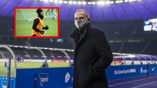 Schalke 04 bastelt an einem weiteren Neuzugang - kommt ein Stuttgarter?