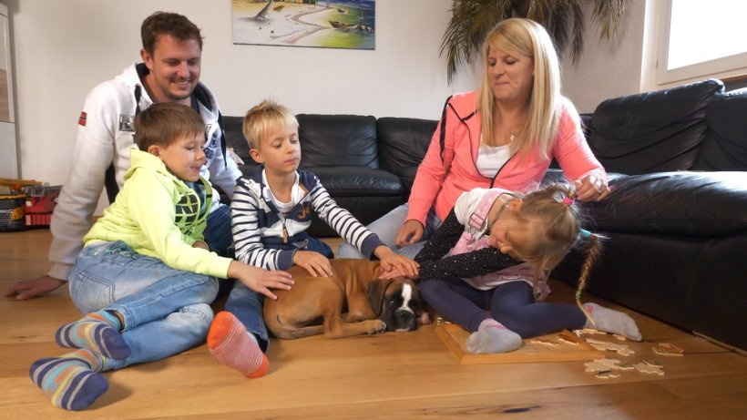 Martin Rütter: Frauchen mit heiklem Versprecher – doch der Hundeprofi fühlt mit