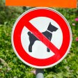 Zoo mit Hund in NRW: In manche Tierparks darfst du deinen Vierbeiner nicht mitnehmen. (Symbolbild)