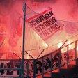 Die Stuttgarter Ultras zündeten Pyrotechnik.