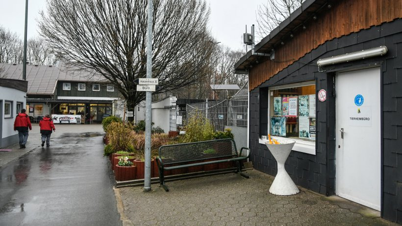 Tierheim In Gelsenkirchen