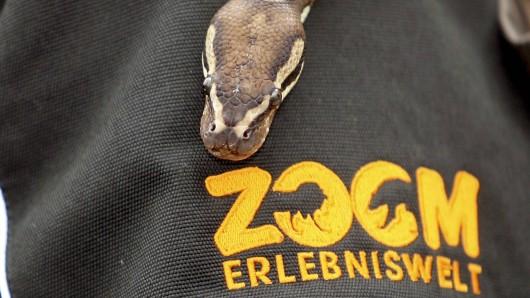 Die Zoom Erlebniswelt ist der umgestaltete ehemalige Ruhr-Zoo.