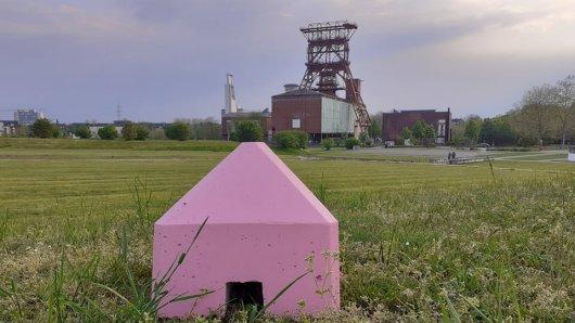 Gelsenkirchen: Was steckt hinter diesen Steinen im Consol Park?