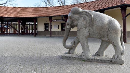 Zoom Gelsenkirchen: Besucher feiern eine neue Attraktion im Zoo - andere sorgen sich. (Symbolbild)