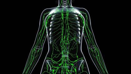 Schwanger geschwollene lymphknoten leiste frau PMS (Prämenstruelles