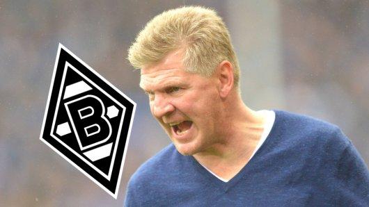 Stefan Effenberg hat Borussia Mönchengladbach scharf kritisiert.
