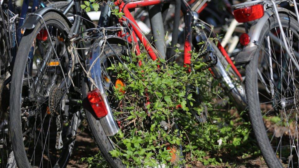 Endstation Schrottplatz Was Aus Vergessenen Fahrrädern Wird