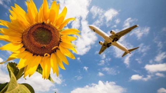 Mit Priority Boarding kann man eine Flugreise schon am Boden wesentlich entspannter beginnen.