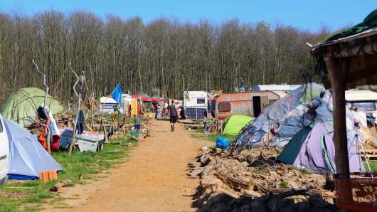 Camp von autonomen Waldbesetzern am Hambacher Forst.