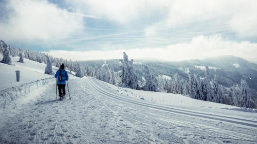 Zum Beispiel am Feldberg lässt sich auf ausgeschilderten Schneeschuhtrails die Natur erkunden.