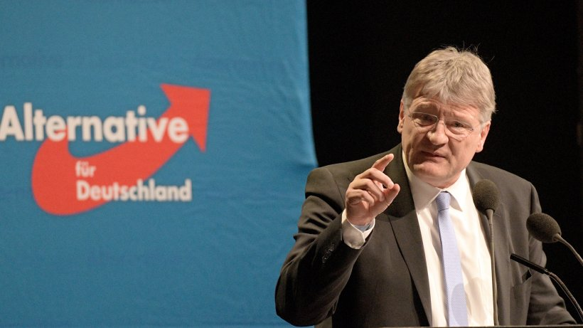 Afd Parteitag Live