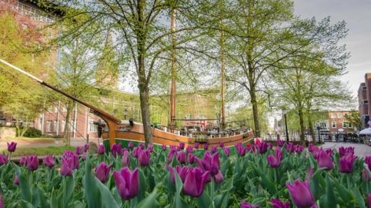 Themengärten und eine Reise durch alle sieben Kontinente bietet die Blumenschau in Papenburg im Sommer 2019.