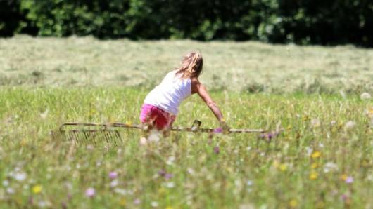 Beim Wiesenmonat im Tiroler Oberland können kleine und große Besucher Bauern auf ihrem Hof besuchen und zum Beispiel lernen, wie man mit einer Sense mäht.