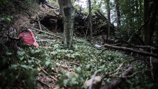 Hier in einem Wald in Mülheim wurde eine junge Frau vergewaltigt.