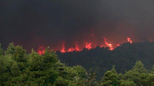 Nach wochenlanger Dürre und bei starken Winden sind zahlreiche Waldbrände ausgebrochen.