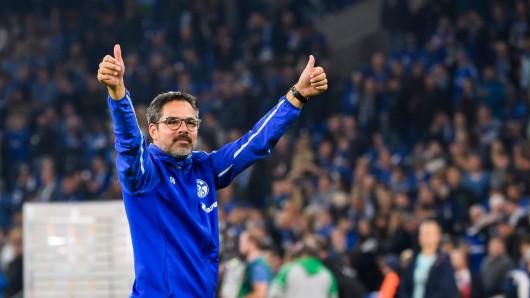 David Wagner und der FC Schalke 04 sind auf einem Höhenflug.