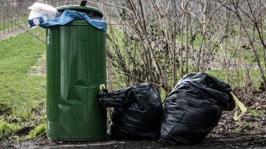 Hund: Die kleine Yorkshire Terrier lag in einer Mülltonne. (Symbolbild)