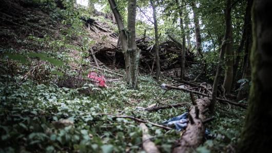 In diesem Waldstück in Mülheim soll sich in diesem Sommer eine brutale Gruppenvergewaltigung ereignet haben.