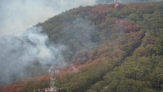 Seit Oktober haben Hunderte Buschbrände in Australien nach Angaben der Behörden bereits mehrere Millionen Hektar Land vernichtet.