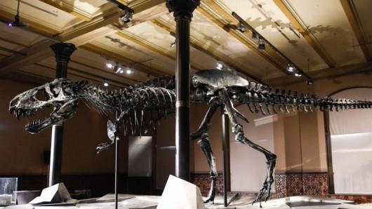 Das Exponat namens Tristan Otto wird am 27. Januar 2020 abgebaut und ein Jahr lang in Kopenhagen (Dänemark) zu sehen sein.