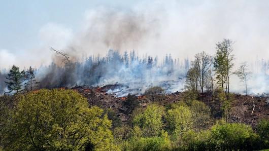 NRW: Der am Montagnachmittag entfachte Brand in einem Wald in Gummersbach ist am Dienstagnachmittag erneut entflammt.