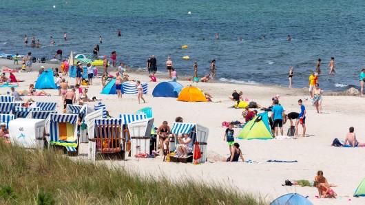 Urlaub an der Ostsee: Touristen lagen am Strand, als plötzlich DAS auf sie zustürmte. (Symbolbild)