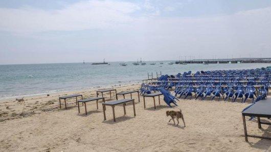 4400 Influencer sollen für die Urlaubsinsel Bali werben.