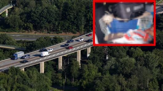 Hund: Dieser Welpen-Fund der Polizei in einem Transporter auf der A45 ist einfach grauenvoll.
