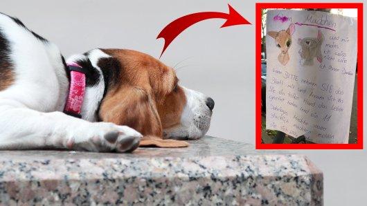 Hund in Düsseldorf: Mit emotionalen Worten dankte ein kleines Mädchen einer unbekannten Frau. (Symbolbild)