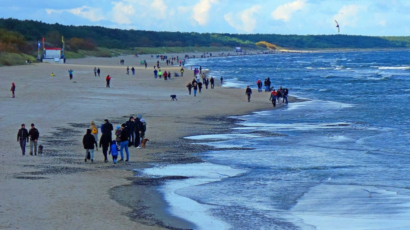 Urlaub an der Ostsee: Touristen finden braunes Ding am Strand – es ist nicht, was du denkst