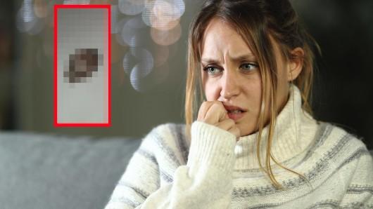 """Düsseldorf: Die Frau entdeckte plötzlich ein Tier in ihrer Wohnung, das sie zuvor """"noch nie gesehen"""" hatte. (Symbolbild)"""