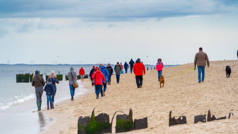 """Urlaub an der Nordsee: Touristen sorgen für Ärger – """"Wie die Axt im Wald"""""""