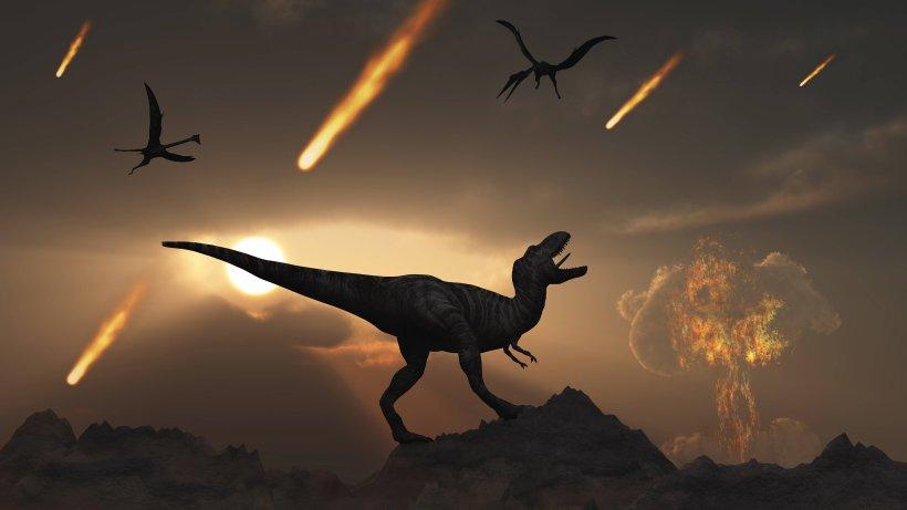 Wissenschaft: Neuer Vermutung als Grund fürs Dinosaurier-Sterben - Der Westen