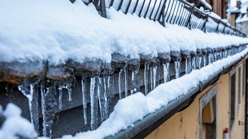 Wetter: Experten prophezeien Frühlingswetter – folgt dann die Kältepeitsche? - Der Westen