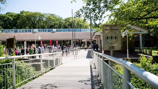 """Zoo Dortmund: Bei der Vorstellung des """"Tieres der Woche"""" ist den Besuchern sofort etwas aufgefallen. (Symbolbild)"""