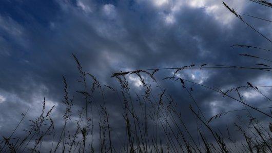 Das Wetter in NRW zeigt sich weiterhin von seiner nassen Seite. (Symbolbild)