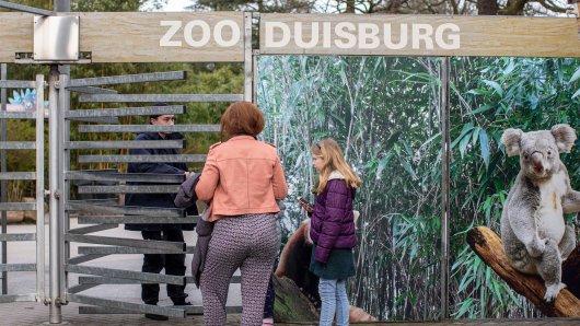 Duisburg: Wegen steigender Inzidenzwerte hat der Zoo jetzt schlechte Nachrichten für seine Besucher. (Archivbild)