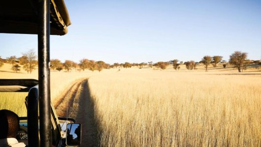 Unterwegs in der Kalahari: Auch gegen das Coronavirus geimpfte Namibia-Reisende müssen bei derEinreise einen negativen PCR-Test vorlegen können.