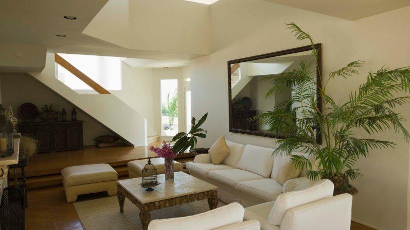 buchtipp innenr ume mit gr npflanzen individuell. Black Bedroom Furniture Sets. Home Design Ideas