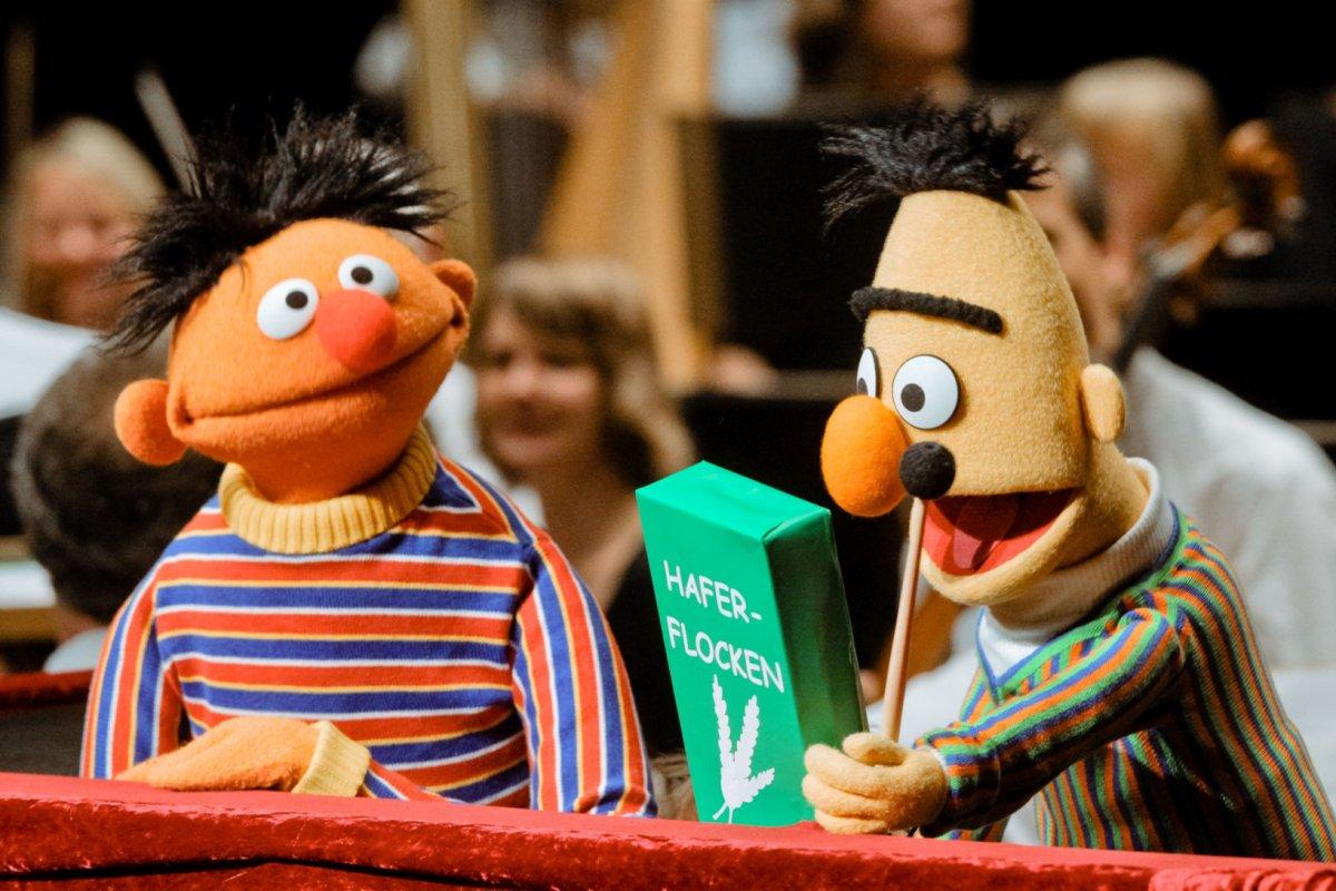 Ernie Und Bert Helfen Bei Der Menschlichen Hirnforschung Panorama