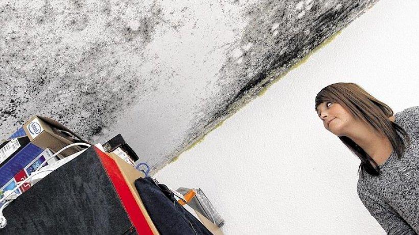 wohnen schimmel in der wohnung mieterin sieht nur noch schwarz duisburg. Black Bedroom Furniture Sets. Home Design Ideas