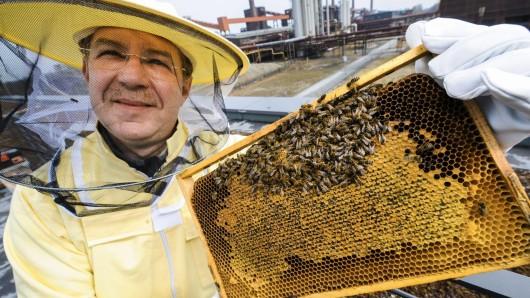 RAG Montan Immobilien siedelt mit Nabu im Ruhrgebiet auf dem Dach ihrer Unternehmenzentrale Bienenvölker an. Das Projekt wird vorgestellt mit einer anschl. Führung zu den Bienenstöcken. Im Bild Imker Oliver Häckel. Foto:Ralf Rottmann / WAZ FotoPool