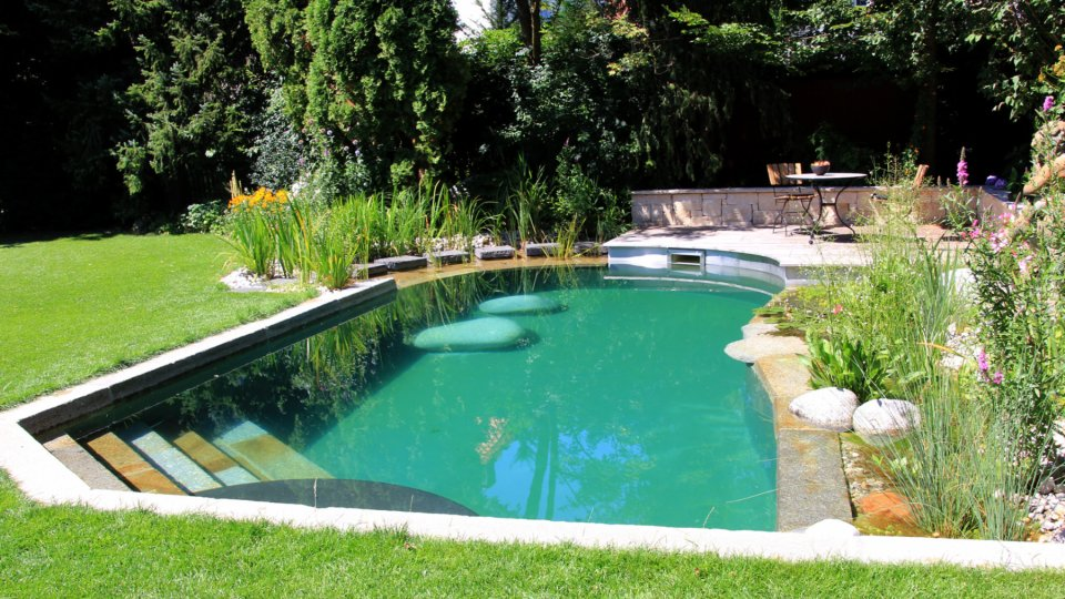 Schwimmteich Statt Swimmingpool So Gehen Heimwerker Beim Bau Nicht