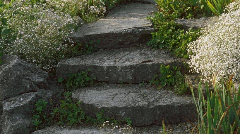 Heimwerker k nnen treppen im garten selbst anlegen mit etwas fachwissen und planung wohnen - Gartentreppe anlegen ...