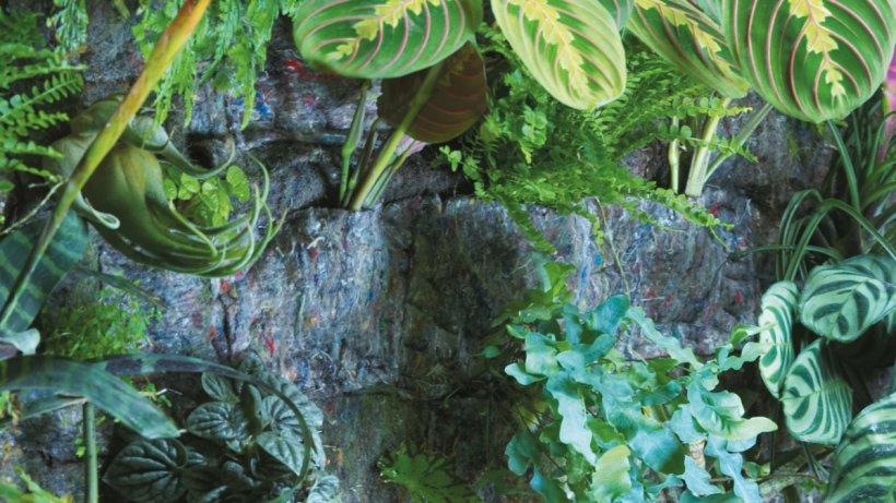 pflanzen bepflanzte bilder sind ein weicher blickfang an den w nden wohnen. Black Bedroom Furniture Sets. Home Design Ideas