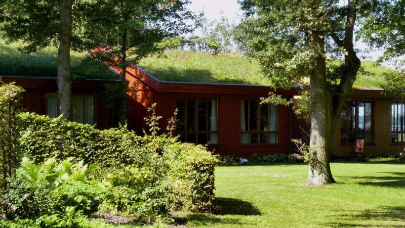 Dachbepflanzung ab Juni von der KfW-Förderbank bezuschusst ...
