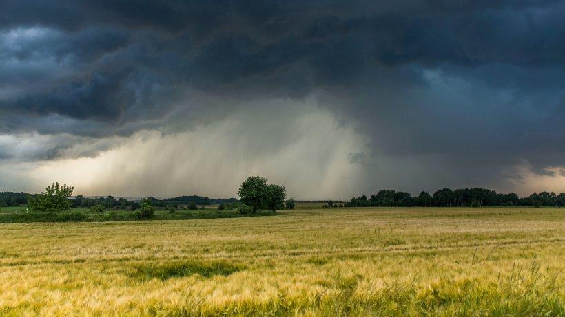 Wetter Lörrach Heute